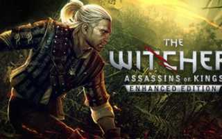 Witcher 2: Assassins of Kings «Comic book — Reasons of State»